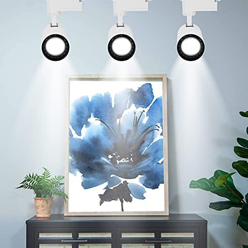 Ichiias Luz de riel de bajo Consumo de energía Luz de riel de Foco LED giratoria antirreflejo de Alto Brillo para Tiendas de Ropa de exposición de hoteles en el(Small (Model 901))