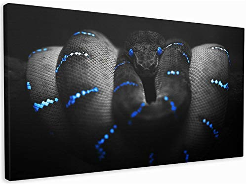 DIY 5D Diamond Painting by Numbers Kits Full Drill Black Snake Diamond Embroidery Adults/Kids Large Cross Stitch Crystal Canvas Art Craft for Home Wall Decor Gift Square Drill,80x160cm(32x64inch)