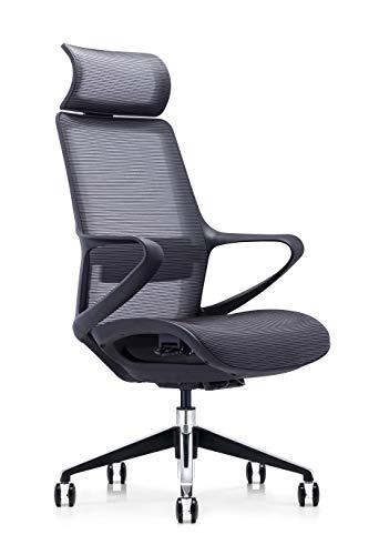 Ergonomischer Stuhl Bürostuhl Computerstuhl Stuhl Executive Stuhl Schutz Lendenwirbelsäule Stuhl atmungsaktiver Mesh Stuhl (Grau)