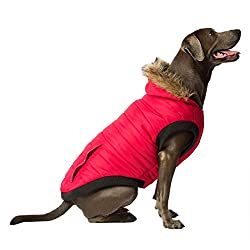 Brown dog wearing a red Canada Pooch North Pole Dog Parka.