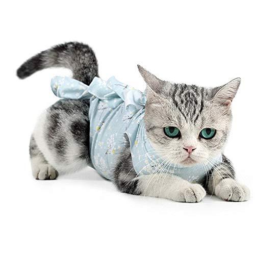 GuangLiu op Body für Hunde Katzenbody Chirurgischer Hundeanzug nach der Kastration Medizinische Hundeweste Katzenkleidung Nur für Katzen Blue,L