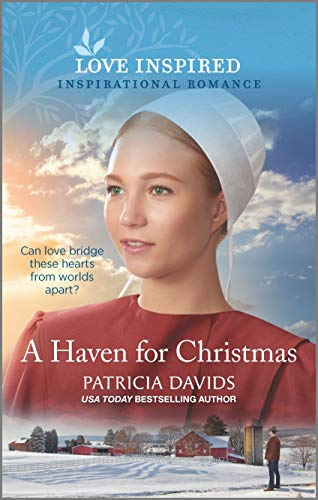 A Haven for Christmas (North Country Amish Book 3)