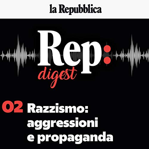 Razzismo: aggressioni e propaganda audiobook cover art