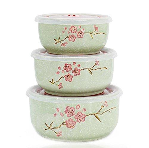 Lot de 3 récipients alimentaires avec couvercles pour micro-ondes Bento, bol en porcelaine Vert
