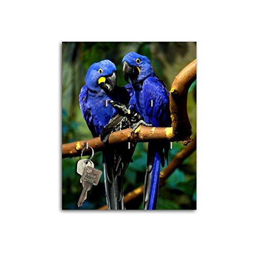 Steelprint porte-clefs mural avec design bleu aras perroquets sB722 relaxdays porte-clés