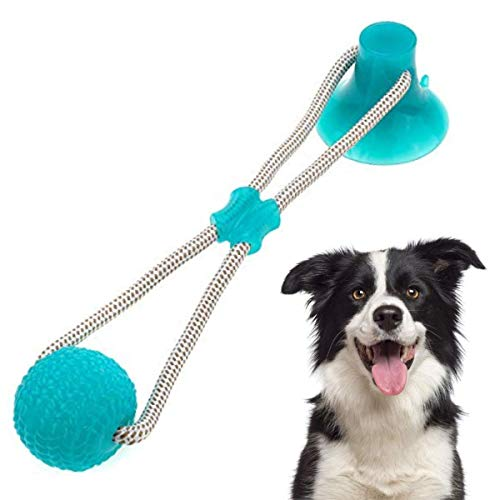 Charminer Pelota de Juguete al Aire Libre para Perros, Juguete Multifuncional para mordedura de Molar para Mascotas, Juguete de Bola de Perro de Estilo de Ventosa Resistente (Azul Claro)