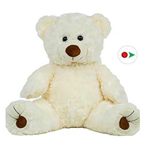 Record Your Own Plush 16 Inch White Twist Bear - Ready 2 Love in a Few Easy Steps