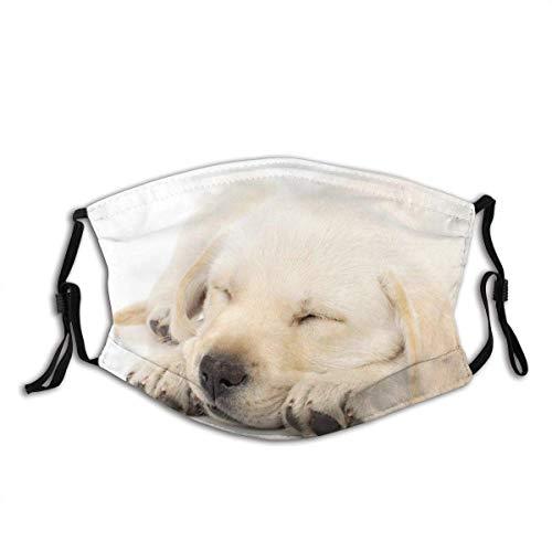 Mascarilla de perro lavable con filtro para adultos