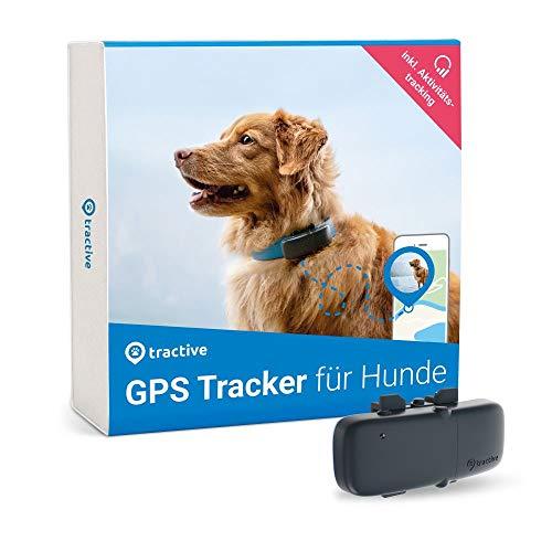 Tractive GPS Tracker für Hunde, unlimitierte Reichweite, Aktivitätstracking, wasserfest, Hundeortung, Modell 2019. (Empfohlen von Martin Rütter)