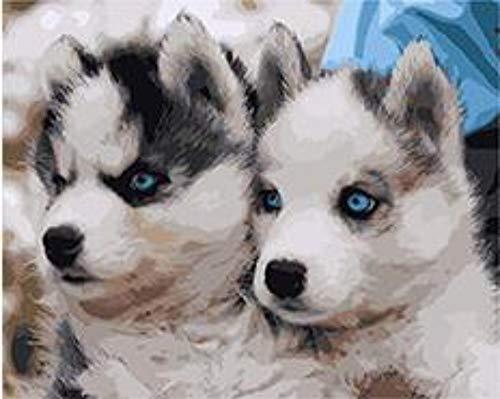 Pedigree Husky Siberiano Cachorros Pintura Diy By Números Animal Pintado A Mano...