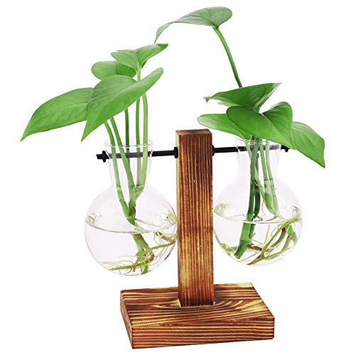 Jardinera de vidrio de escritorio, florero de bulbo de terrario de planta con soporte de madera, maceta de vidrio hidropónico de propagación, para decoración de boda, jardín, oficina en casa L:13.5cm