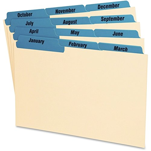 Index Card Guides,Laminated,Monthly,5