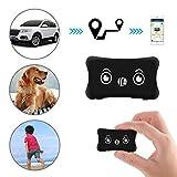 Likorlove Traqueur GPS Intelligent pour Animaux de Compagnie, Collier de Chat et de Chien Ajustable avec traqueur GPS et Moniteur d'activité, localisateur d'animaux en Temps réel étanche