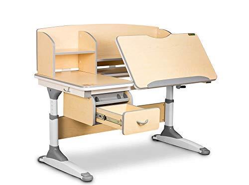 Ergodesk Torino Schreibtisch reguliert mit Aufsatz Höhenverstellbarer Schreibtisch (braun)