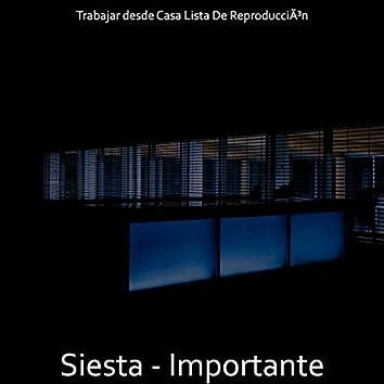 Siesta - Importante