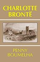 Charlotte Bronte (Studies in Literature and Culture)