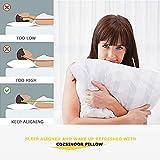7 BEST Pillows on Amazon