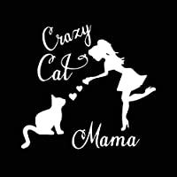 カーステッカー狂った母猫バンパーステッカー猫母猫の女性ビニール車の窓のステッカー黒/シルバー15,5X14,4 CM mingcong888 (Farbname : Silber)