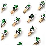 A+TTXH+L Pinzas para La Ropa 50 PCS/Set Colore CAPULO Lindo CAPULO DE Muestra DE Memoria PRODUCTE PRODUCTOR DE Propietario DE POSTALERÍA DE POSTALERÍA DE POSTALERÍA para PUBLICACIONES DE Decoración