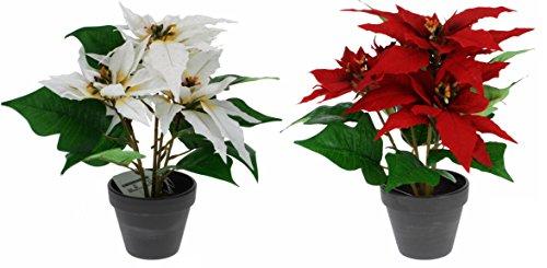 matrasa Weihnachtsstern Christstern künstlich - 30 cm - täuschend echte Kunstblume Weiß