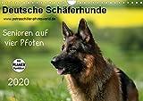 Deutsche Schäferhunde - Senioren auf vier Pfoten (Wandkalender 2020 DIN A4 quer)