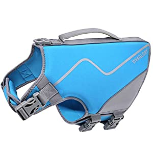 Vivaglory Small Dog Life Jacket, New Sports Style Life Vest for Dogs with Superior Buoyancy & Rescue Handle, Blue S