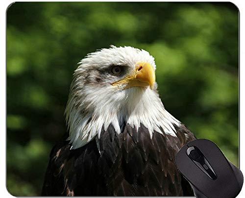 Mausunterlagen Besonders angefertigt, Eagle Bird Predator-Schnabel-Vogel-Thema-Gummimausunterlage