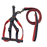<span class='highlight'>Pet</span> Online Hyena rope nylon elastic buffer <span class='highlight'>pet</span> leash,1.0cm×120cm 1.0×23-34cm,red