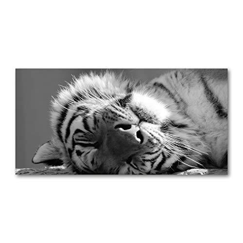 Tulup Glas-Bild Wandbild aus Glas - Wandkunst - Wandbild hinter gehärtetem Sicherheitsglas - Dekorative Wand für Küche & Wohnzimmer 100x50 - Tiere - Müder Tiger - Schwarzweiß