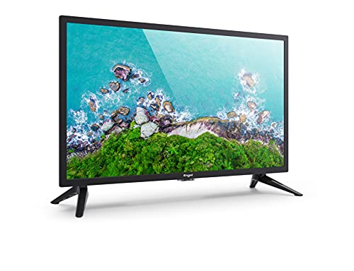 Engel EVER LED - Televisor LE2450 de 24 Pulgadas (USB, PVR, OCA, modo hotel)