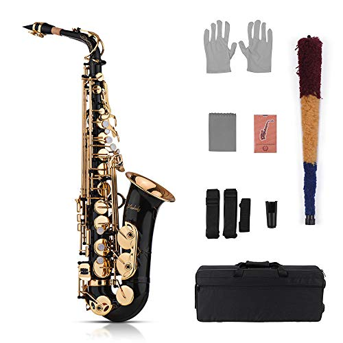 Saxophone Set