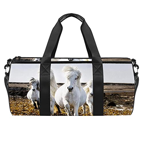 Borsone sportivo da palestra, borsa da danza media leggera e resistente, con scomparto da viaggio per uomini e donne, fiori bianchi al sole, Cavallo bianco 2, 45x23x23cm,