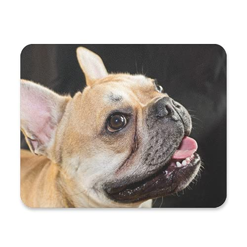 BlueViper Cute Sweet French Bulldog Mouse Pad Smooth Surface Gaming Pad Thick Non-Slip Rubber Base Colorful Cute Design Art Artist Painting Unique Novelty Gift for School Office Game
