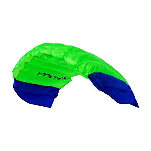 Wolkenstürmer® Paraflex Basic 2-Leiner Lenkmatte 1.2 grün - Kite Drachen mit Flugschlaufen – Zweileiner Lenkdrachen - Flugdrachen für Anfänger & Kinder ab 6 Jahren