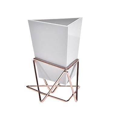 DZSJ Home Sundries Storage Box Geometric Wall Decor Container Multiuse Table Desk Organizer Office Supplies Flowerpot Wall Flower Shelf