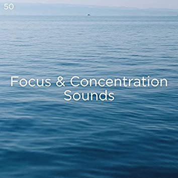 50 Focus & Concentration Sounds