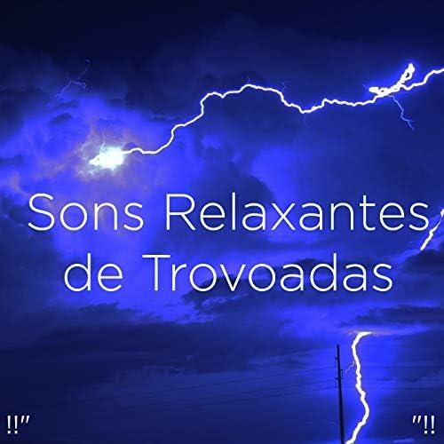 Sounds Of Nature : Thunderstorm, Rain & Thunder Storms & Rain Sounds