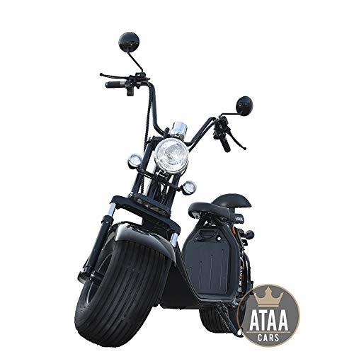 ATAA Citycoco Matriculable Batera extrable - Scooter...