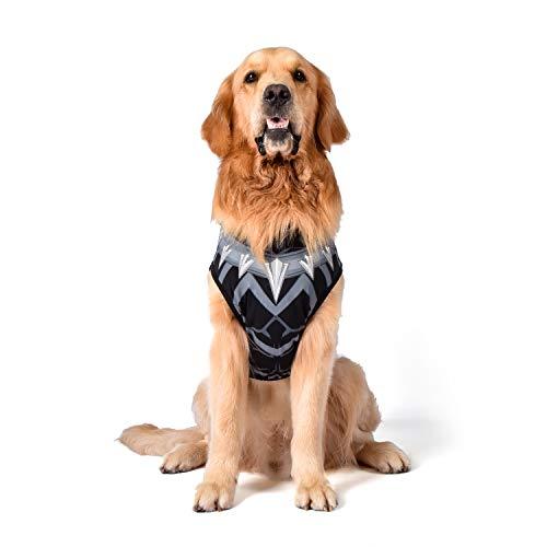 Marvel Disfraz de Pantera Negra para Perros, pequeño | Best Avengers Infinity War Disfraz de Halloween para Perros pequeños y Cachorros