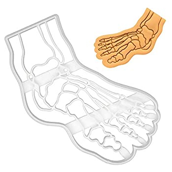 Human Foot Bone X-Ray cookie cutter 1 piece - Bakerlogy