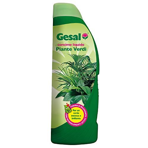 GESAL Concime Liquido per Piante Verdi, Per un Verde intenso e brillante, 1 l