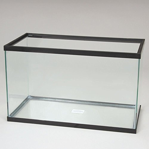 Aquarium Tank by Carolina Biological Supply Compan