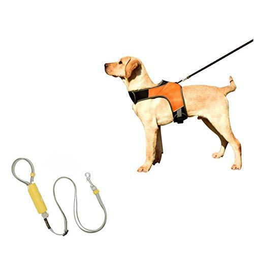 AKlamater Arnés Reflectante para Perros, Naranja Ajustable Seguridad Nocturna Chaleco de arnés para Perros con Correa Desmontable de 1,6 m para Perro pequeño Mediano(M)