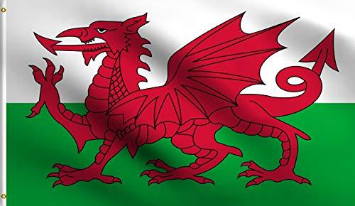 DMSE Air Series Wales-Fahne mit rotem Drache von Cadwaladr, 100% Polyester, mit Metallösen, Sport- und Großveranstaltungen 3' X 5' Ft Foot 3' X 5' Ft Foot