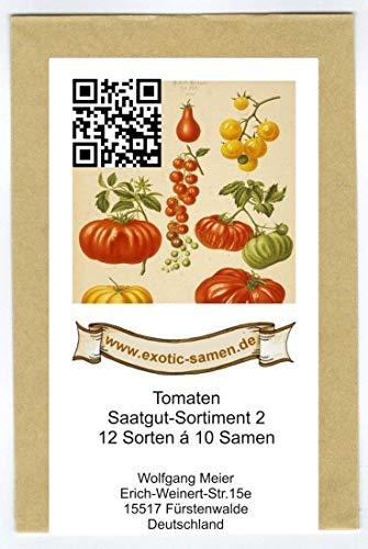 Samen - Saatgutsortiment 2 - Set - Mix - Mischung - historische, samenechte Tomatensorten - 12 Sorten á 10 Samen