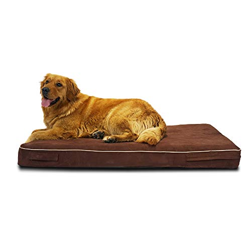 Laifug Orthopedic Memory Foam Pet/Dog Bed (Large(46'x28'x4') Chocolate) with Durable Water Proof Liner and Removable Designer Washable Cover