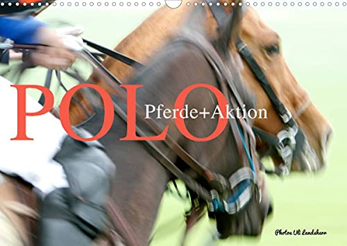 Polo Horses + Action 2022