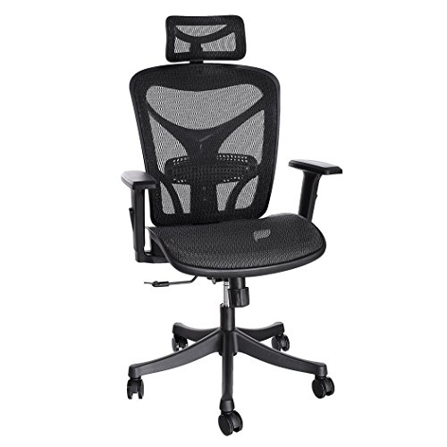 ANCHEER Ergonomic Office Chair, High Back Mesh Office Chair with Adjustable Lumbar Support,Armrest and Headrest ( BIMFA Certified )