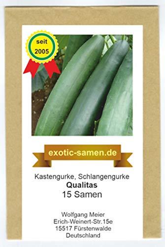 Kastengurke, Schlangengurke – Qualitas – deutsche Traditionssorte – bitterfrei – widerstandsfähig gegen Gurkenkrätze – 15 Samen