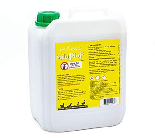 FINCA CASAREJO SoluPioj 5 litros - Producto Natural para Eliminar piojos, pulgas, garrapatas y chinches - Formato Grande